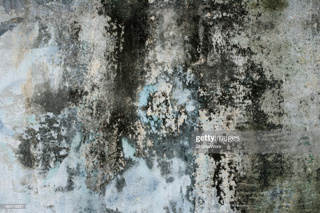 Grungy Colorful Dilapidated Concrete Wall