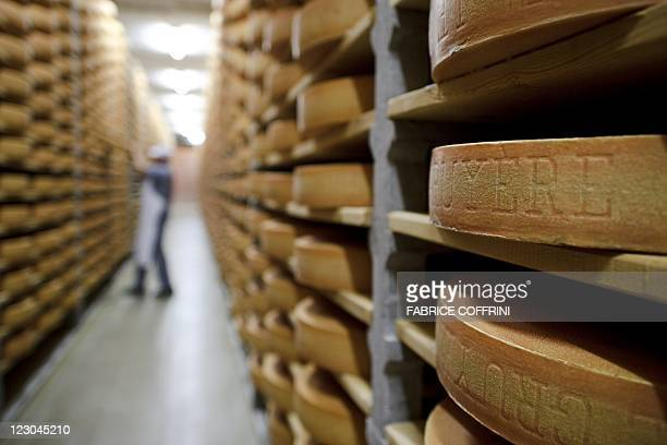A Gruyere cheese wheel is checked during maturing operation in a giant cellar in Bulle western Switzerland on August 29 2011 Since at least 1115 AD...