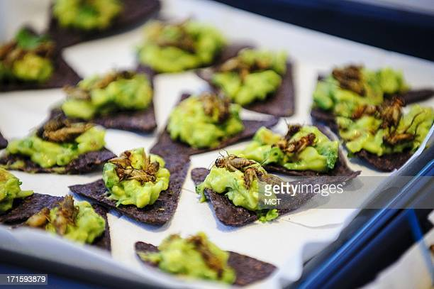 Guacamole with crickets was among the menu items at the Royal Netherlands Embassy on Wednesday June 26 in Washington DC The embassy hosted an event...