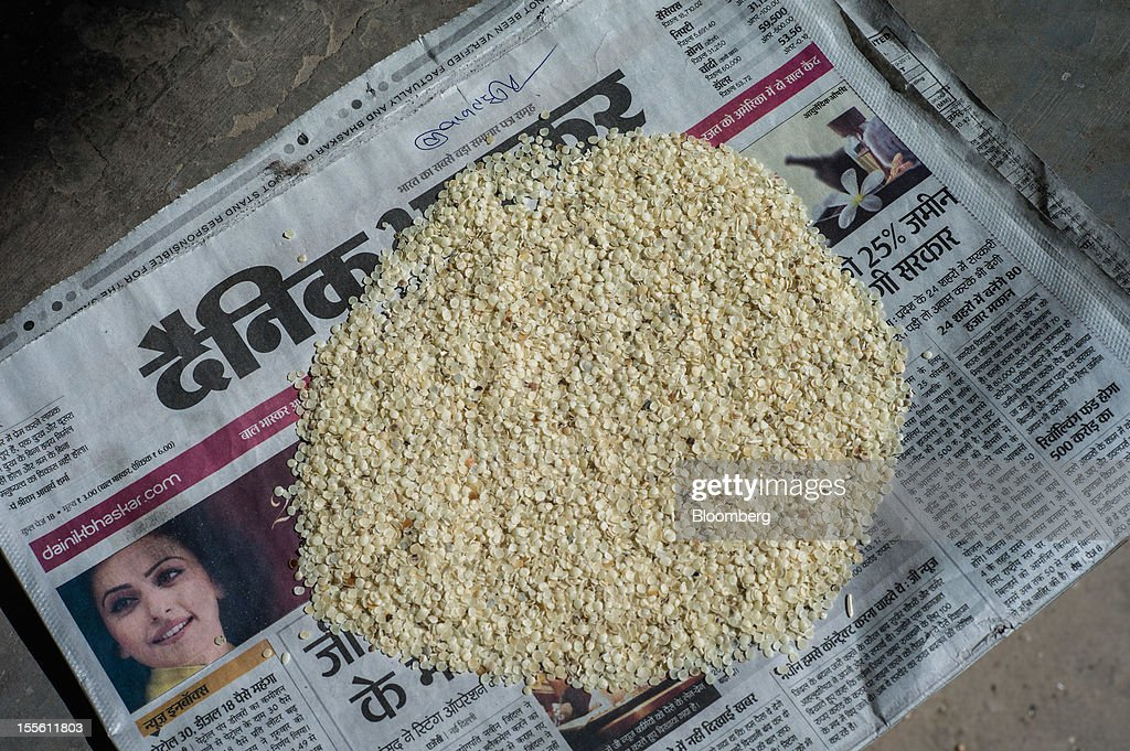 Guar gum split is displayed for a photograph in a processing plant on the outskirts of Mathania, in the district of Jodhpur in Rajasthan, India, on Monday, Oct. 29, 2012. Guar gum is used to blend materials used in fracking. Photographer: Sanjit Das/Bloomberg via Getty Images