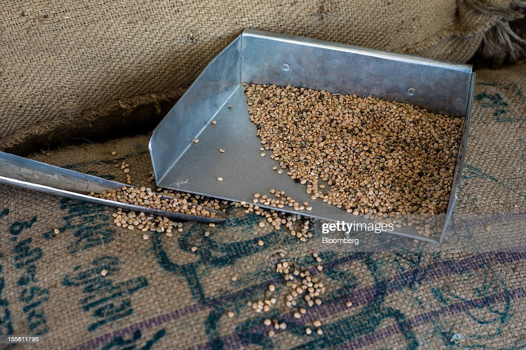 Guar seed is displayed for a photograph in a processing plant on the outskirts of Mathania, in the district of Jodhpur in Rajasthan, India, on Monday, Oct. 29, 2012. Guar gum is used to blend materials used in fracking. Photographer: Sanjit Das/Bloomberg via Getty Images