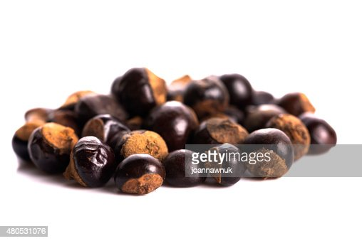 Guarana seeds : Stock Photo