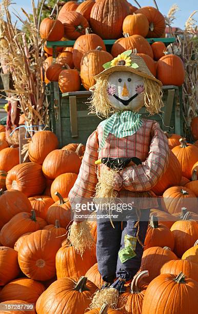 Guardian Of The Pumpkins