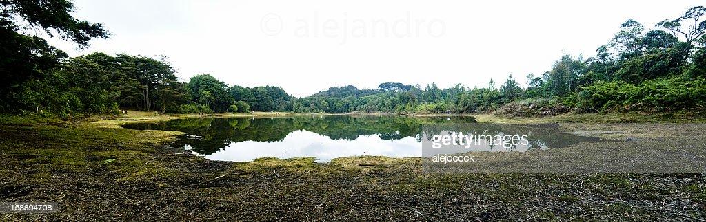 Guarne lake : Stock Photo