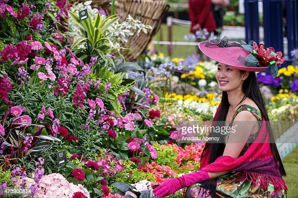 A guest visiting Birmingham Cathedral's garden design at the Chelsea Flower Show on May 18 2015 in London England The show which has run annually...