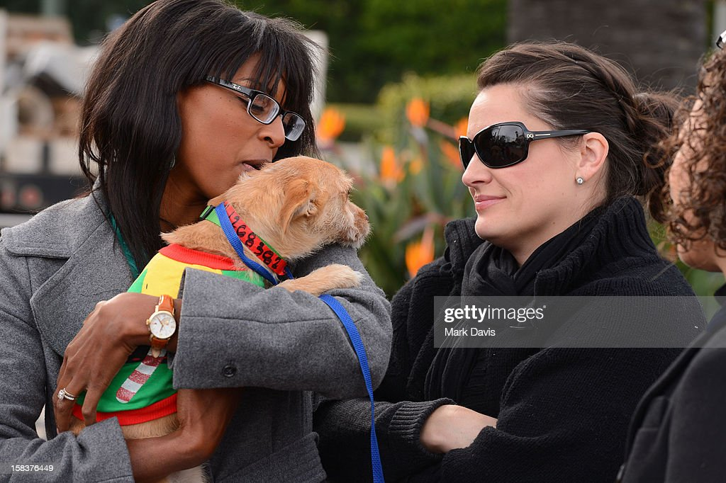 Guests interact with puppies at the 'Grinchmas Max To The Rescue' Holiday Dog Adoption Fair held at Universal Studios Hollywood on December 14, 2012 in Universal City, California.