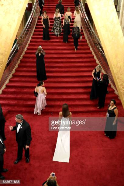 Guests walk the red carpet at the 89th Annual Academy Awards at Hollywood Highland Center on February 26 2017 in Hollywood California