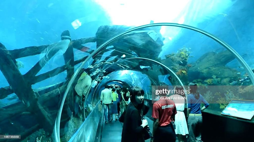 Guests watch the open ocean habitat, seen through the world's largest viewing panel, at 36 metres wide by 8.3 metres tall of the South East Asia aquarium, the world's largest oceanarium at Sentosa Resort World marine life park during a media preview in Singapore on November 20, 2012. The aquarium will be home to 100,000 marine animals of over 800 species in 45 million litres of water that will opens to the public on November 22.