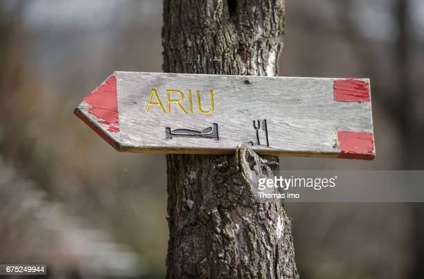 Guide to a guest house on a tree on March 30 2017 in Peja Kosovo