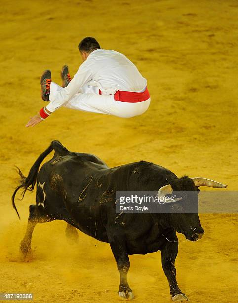 Guillaume Vergonzeanne of the French Recortadores company Passion Saltador leaps over a charging bull at the end of the Liga de Corte Puro finals at...