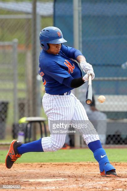 Guillermo Granadillo of the Mets at bat during the Gulf Coast League game between the Marlins and the Mets on July 21 at the New York Mets Minor...