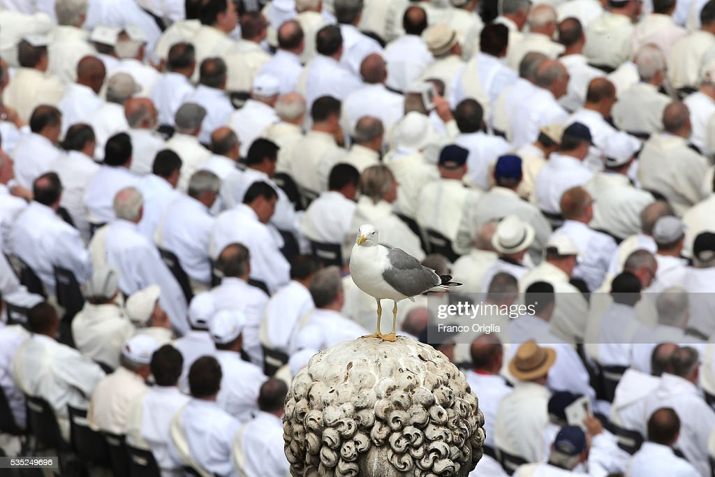 A gull rests on St. Peter's Sculpture during the Mass for Jubilee of Deacons held by Pope Francis on May 29, 2016 in Vatican City, Vatican. The Church marked the Extraordinary Jubilee Year of Mercy in a special way with the Jubilee of Deacons. As their very title suggests taken as it is from the Greek word for 'servant', diakonos Deacons are ordained to a ministry of service in the Church.