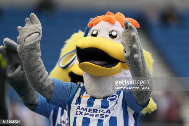 Gully the Brighton and Hove Albion mascot during the Premier League match between Brighton and Hove Albion and West Bromwich Albion at Amex Stadium...