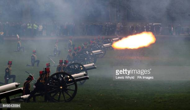 Gun Royal Salute to mark the 61st anniversary of the Queen's accession to the throne at Green Park in central London