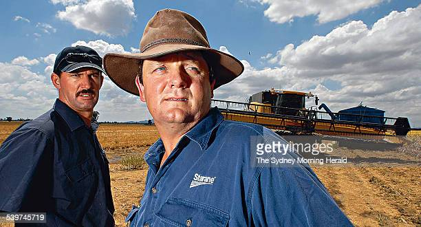 Gunnedah Farmers left to right Darren Swain and Scott Morgan at Swains property where sorghum harvest has come to a halt because of moisture They...