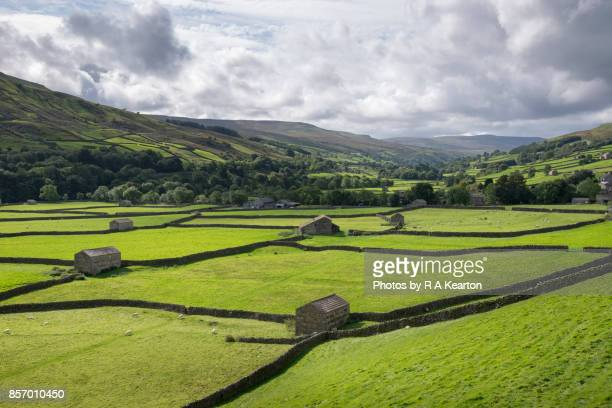 Gunnerside meadows, Swaledale, North Yorkshire, England
