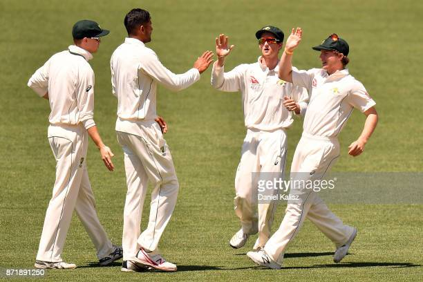 Gurinder Sandu of CA XI celebrates after taking a wicket during day two of the Four Day Tour match between the Cricket Australia XI and England at...
