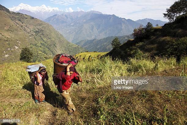 Gurung women carrying baskets up the hillside