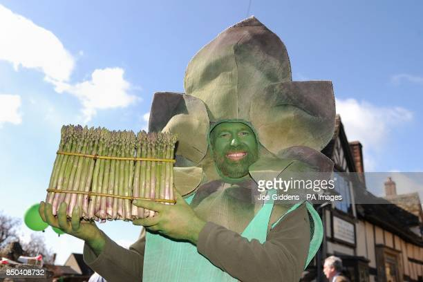 Gus the Asparagus man holds the world's largest round of asparagus as he celebrates the launch of British asparagus season A host of asparagus fans...