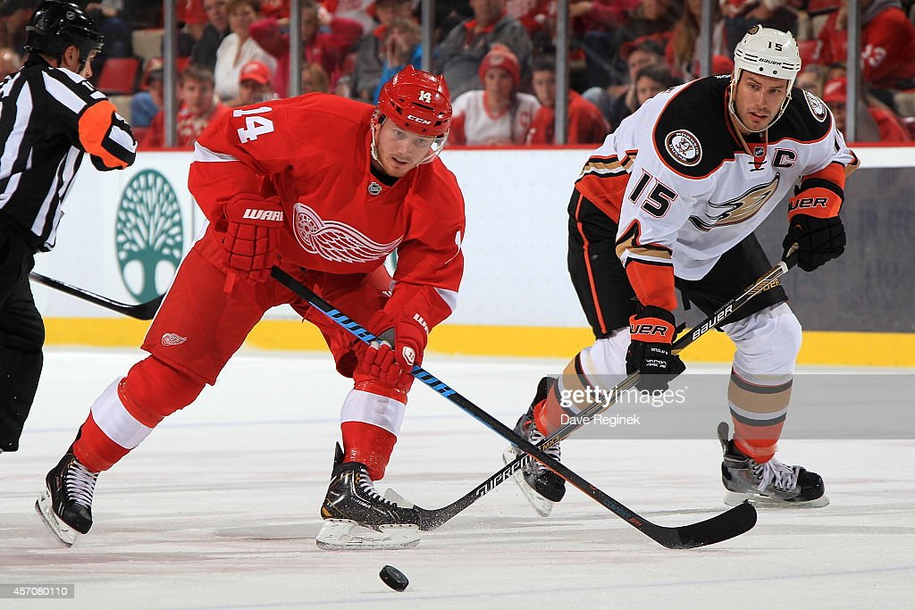 Gustav Nyquist of the Detroit Red Wings and Ryan Getzlaf of the Anaheim Ducks battle for the puck during a NHL game on October 11 2014 at Joe Louis...
