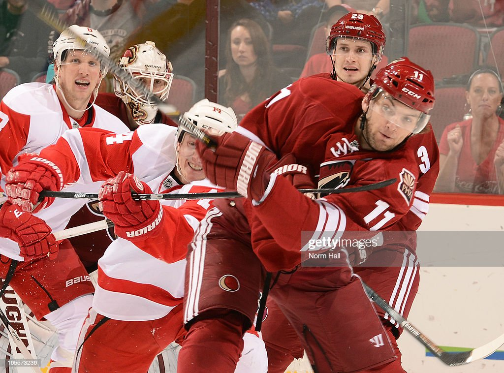 Gustav Nyquist #14 of the Detroit Red Wings hooks <a gi-track='captionPersonalityLinkClicked' href=/galleries/search?phrase=Martin+Hanzal&family=editorial&specificpeople=2109469 ng-click='$event.stopPropagation()'>Martin Hanzal</a> #11 of the Phoenix Coyotes as he clears the puck during the third period at Jobing.com Arena on April 4, 2013 in Glendale, Arizona.