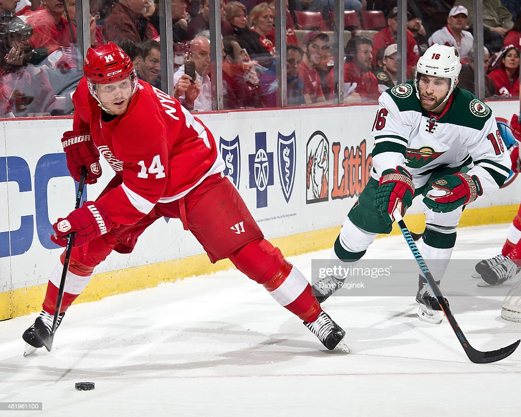 Gustav Nyquist of the Detroit Red Wings protects the puck from Jason Zucker of the Minnesota Wild during a NHL game on January 20 2015 at Joe Louis...