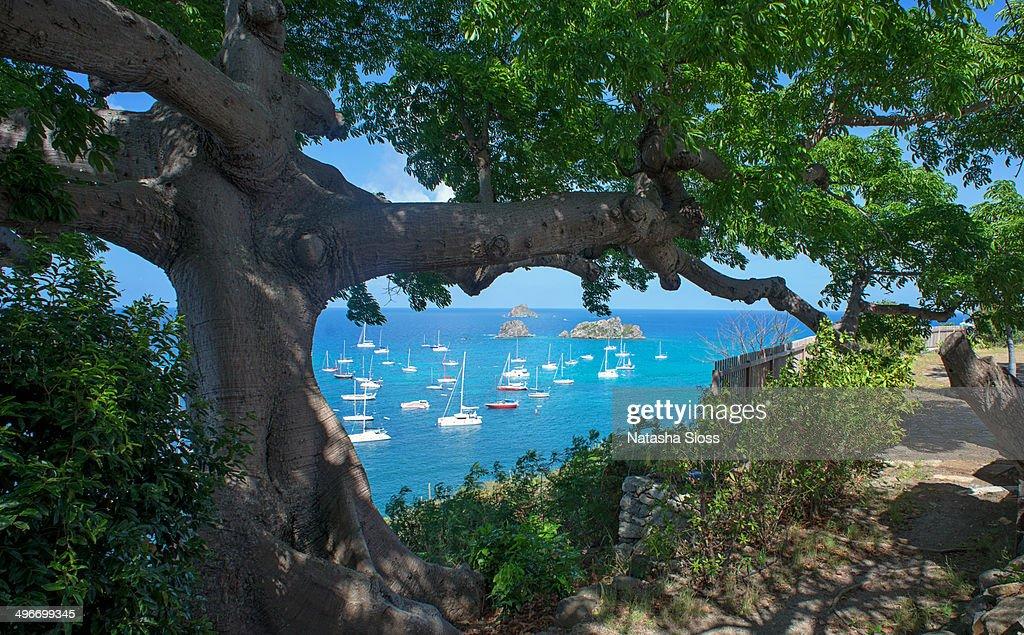 Gustavia Harbor in St. Barthelemy