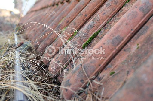 Gutter And Downspout Clogged With Leaves Stock Photo | Thinkstock