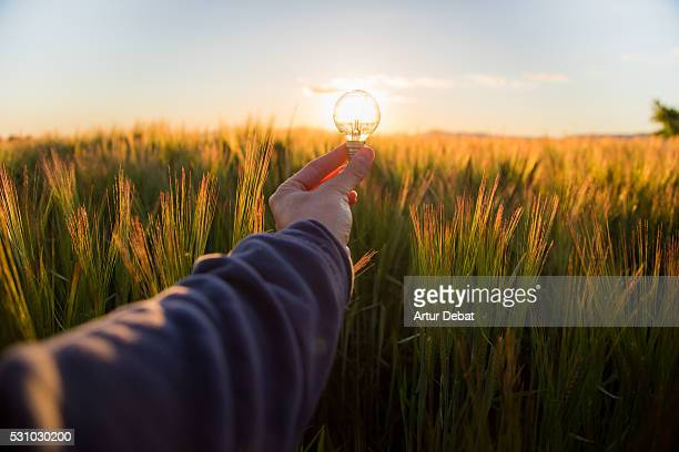 Guy from personal point of view holding a light bulb illuminated by the sunset light on the countryside.