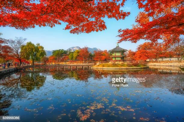 Gyeonbokgung Palace in autumn,South Korea