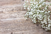 bouquet of gypsophila on a wooden background