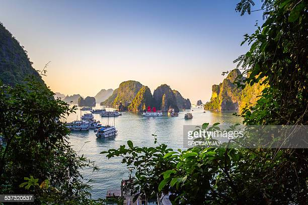 Ha Long Bay from Sung Sot Cave