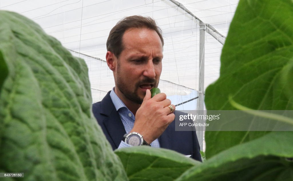 haakon-crown-prince-of-norway-tours-the-sahara-forest-project-launch-picture-id843726150