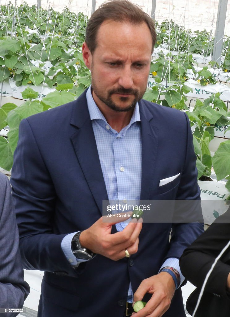 haakon-crown-prince-of-norway-tours-the-sahara-forest-project-launch-picture-id843726252