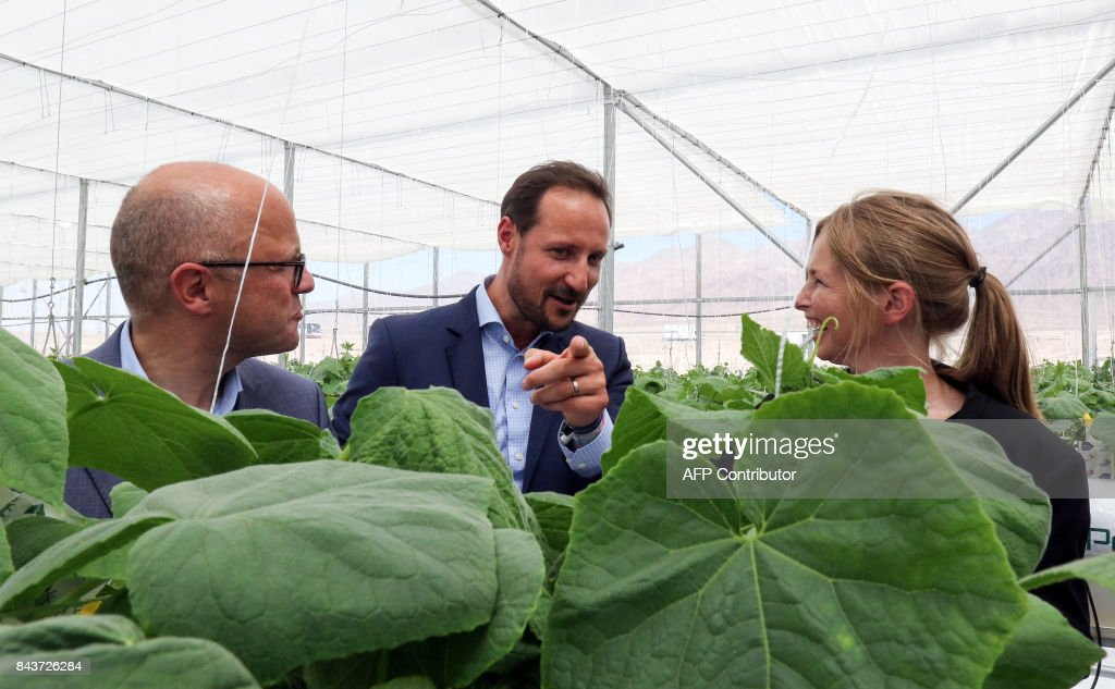 haakon-crown-prince-of-norway-tours-the-sahara-forest-project-launch-picture-id843726284