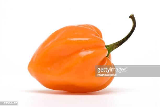 Habanero - the hottest!