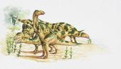 Hadrosaurus foulkii Hadrosauridae Late Cretaceous Artwork by Clive Pritchard