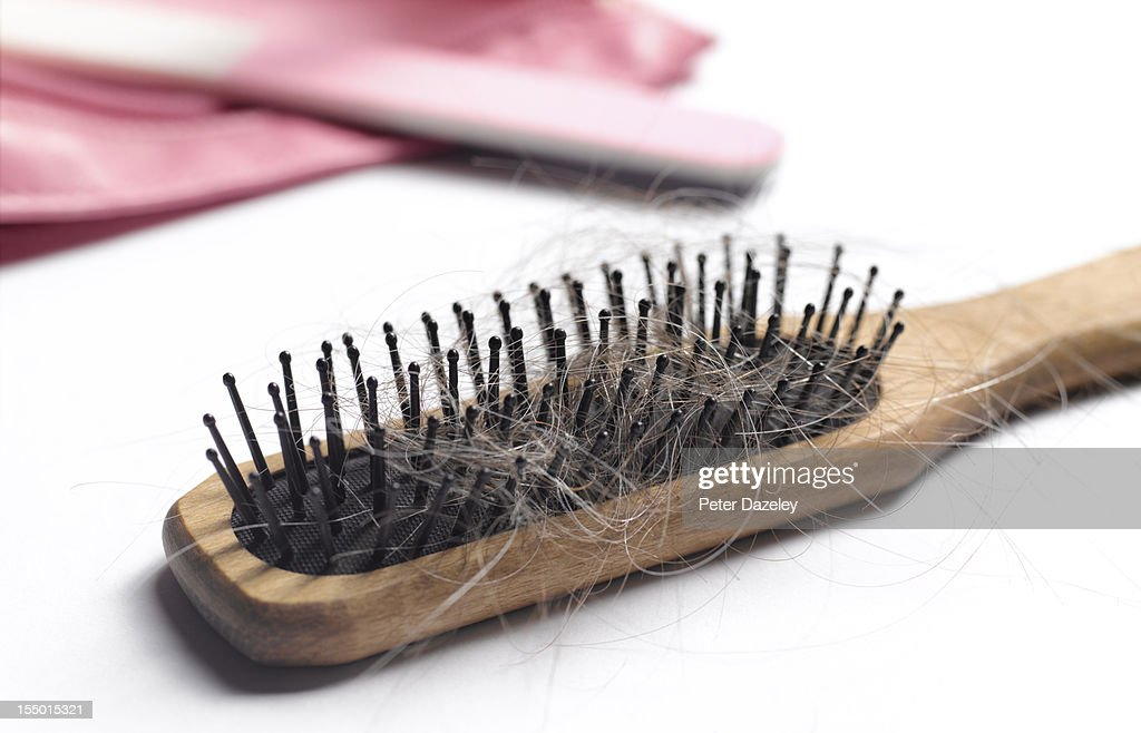 Hair brush with hair in it : Stock Photo