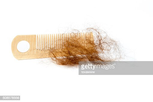 Hair loss concept : Stock Photo