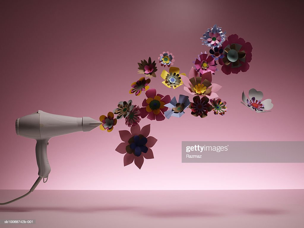 Hairdryer drying artificial flower, close-up : Stock Photo