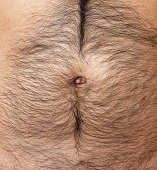 Close up of belly hairy furry men