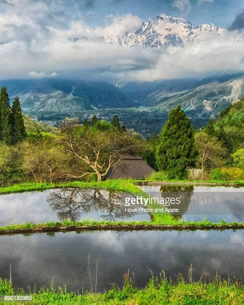 Hakuba Village spring scenery