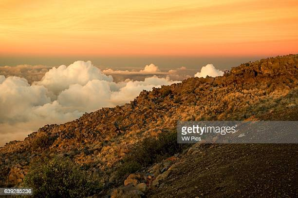 Haleakala National Park Views from the viewpoint of Leleiwi Maui Hawaii The Haleakala National Park ranges through five distinctly different climates...