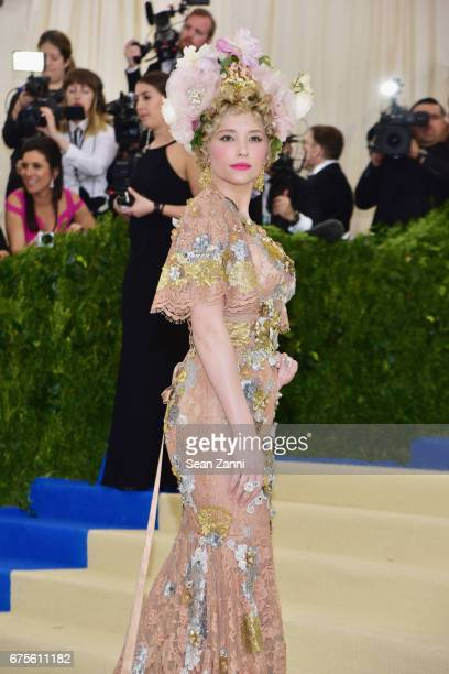 Haley Bennett arrives at 'Rei Kawakubo/Comme des Garcons Art Of The InBetween' Costume Institute Gala at The Metropolitan Museum on May 1 2017 in New...