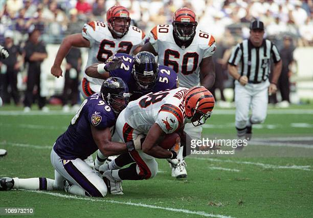 Half back Corey Dillon of the Cininnati Bengals carries the ball upfield for some good yardage with the help of blocking by teammates Offensive...