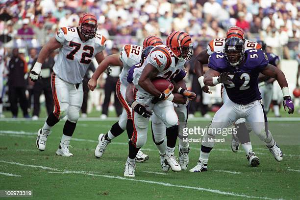 Half back Corey Dillon of the Cininnati Bengals carries the ball upfield for some good yardage with the help of blocking by Guard Matt O'Dwyer and...