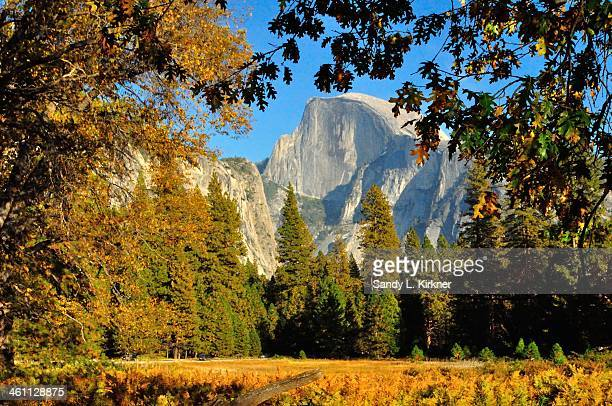 Half Dome framed by Fall Colors