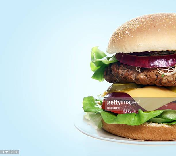 Half hamburger on blue