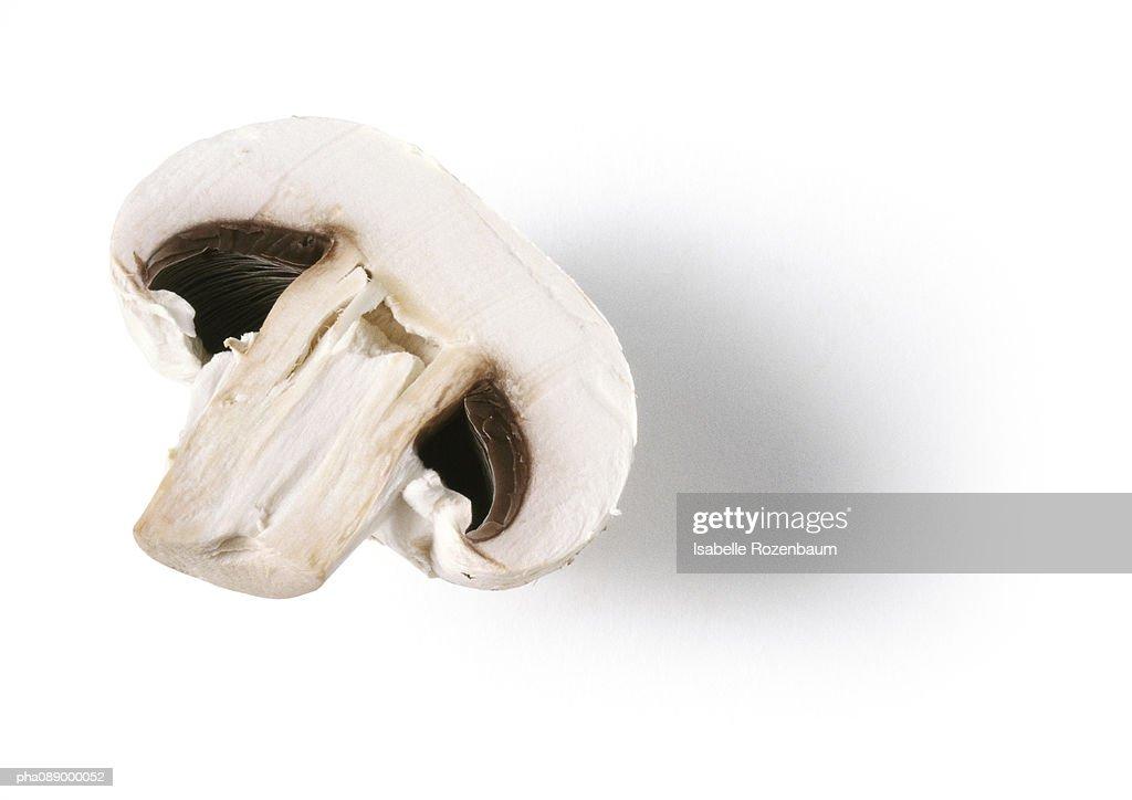 Half of a mushroom, close-up