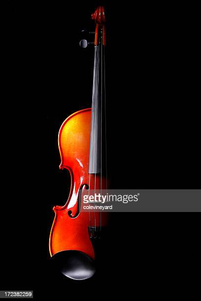 Half of a violin in black background